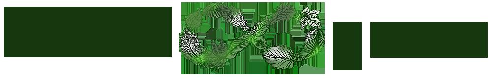 MKHL Media future-green